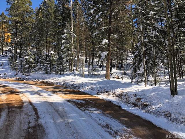 320 Saguache Drive, Florissant, CO 80816 (MLS #2599126) :: 8z Real Estate