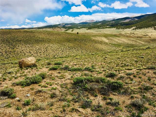 Tract 63 Prcl 1A, Twin Lakes, CO 81251 (#2600377) :: The DeGrood Team