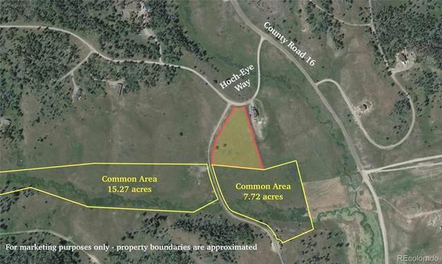 20940 Hoch-Eye Way, Oak Creek, CO 80467 (MLS #2600527) :: Bliss Realty Group