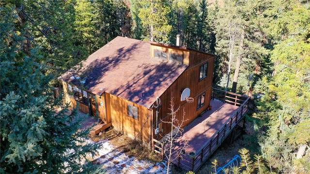 12058 Circle Drive, Conifer, CO 80433 (#2600701) :: Berkshire Hathaway Elevated Living Real Estate
