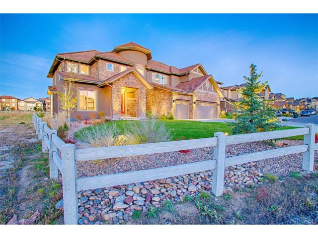 10672 Braesheather Court, Highlands Ranch, CO 80126 (#2601899) :: The Peak Properties Group