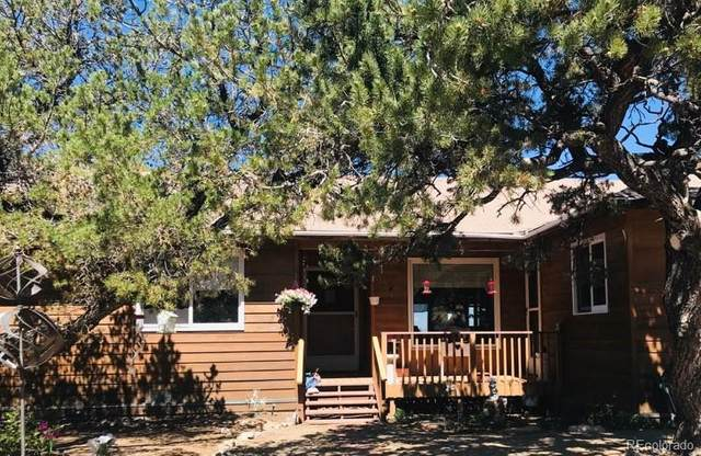 105 Indian Hill Road, Mosca, CO 81146 (MLS #2608688) :: 8z Real Estate