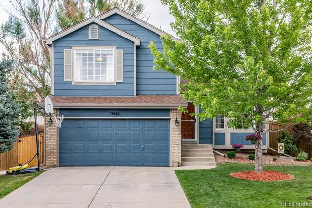 15972 Rock Crystal Drive, Parker, CO 80134 (#2609152) :: The DeGrood Team