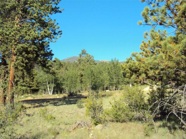 30455 Timberline Drive, Buena Vista, CO 81211 (MLS #2609985) :: 8z Real Estate