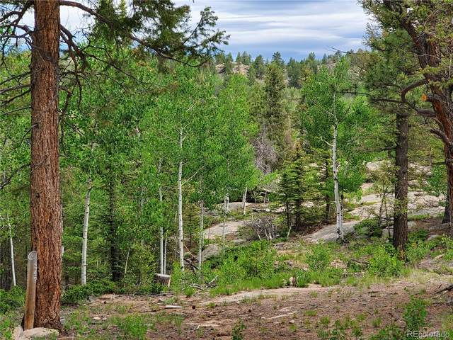 71 Alpine Drive, Florissant, CO 80816 (#2610058) :: Wisdom Real Estate