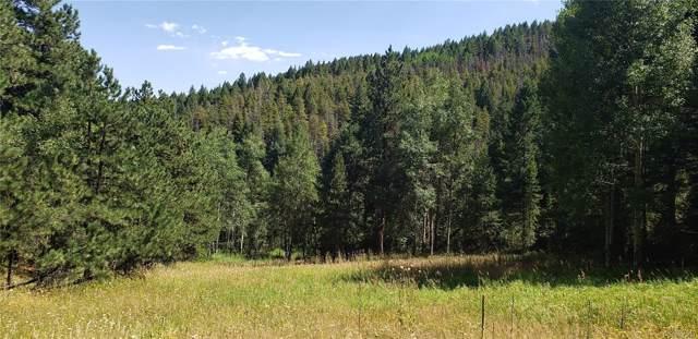 00 Indian Springs Road, Conifer, CO 80433 (MLS #2612202) :: 8z Real Estate