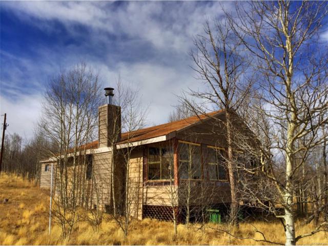 141 Winchester, Como, CO 80432 (MLS #2612709) :: 8z Real Estate