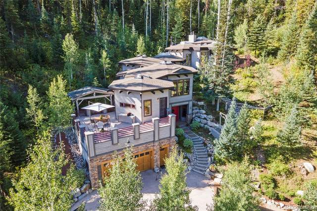 36871 Tree Haus Drive, Steamboat Springs, CO 80487 (MLS #2619016) :: Bliss Realty Group
