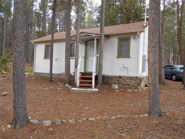 10919 Schweigert Avenue, Conifer, CO 80433 (MLS #2619435) :: 8z Real Estate