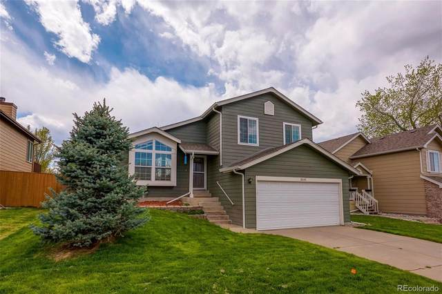 9045 Bermuda Run Circle, Highlands Ranch, CO 80130 (#2624381) :: Mile High Luxury Real Estate