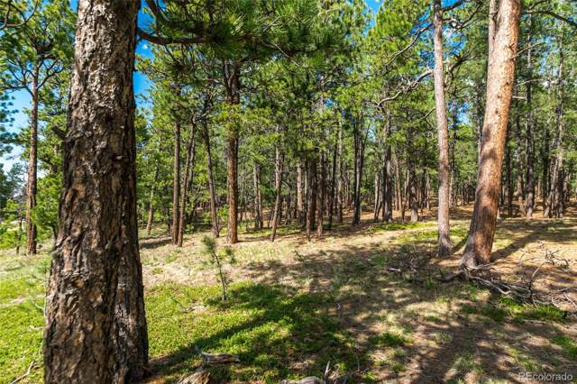 19204 Hilltop Pines Path, Monument, CO 80132 (#2625380) :: The Gilbert Group