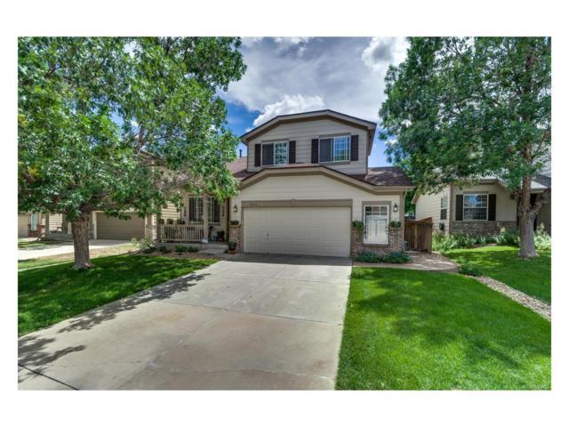 6816 Lionshead Parkway, Littleton, CO 80124 (MLS #2628895) :: 8z Real Estate