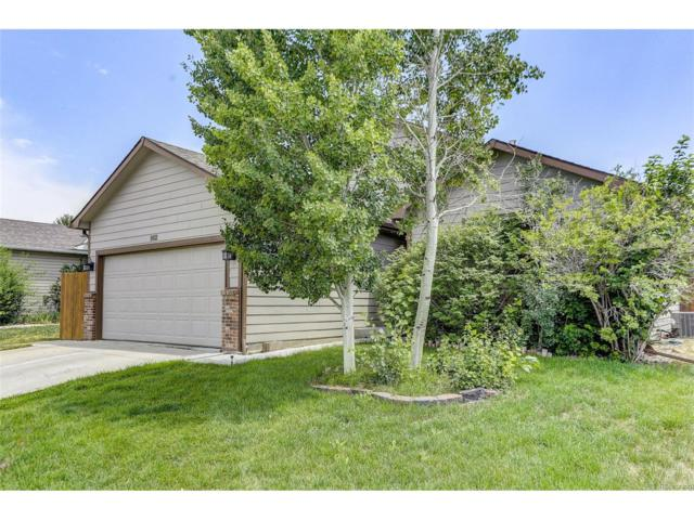 902 Thornhill Place, Fort Collins, CO 80524 (MLS #2629171) :: 8z Real Estate