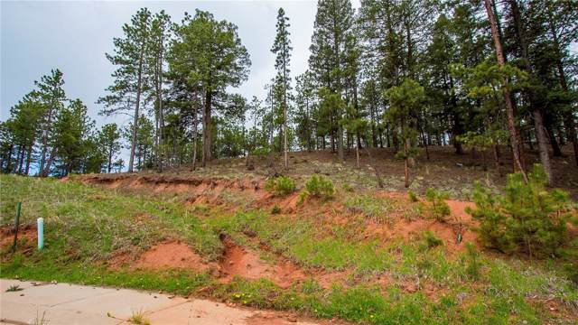 1200 Cottontail Trail, Woodland Park, CO 80863 (#2630983) :: The Heyl Group at Keller Williams