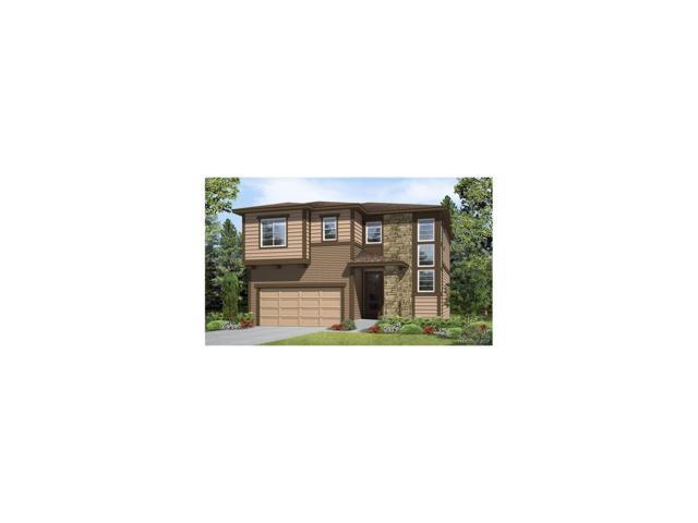 2664 Loon Circle, Castle Rock, CO 80104 (MLS #2631973) :: 8z Real Estate