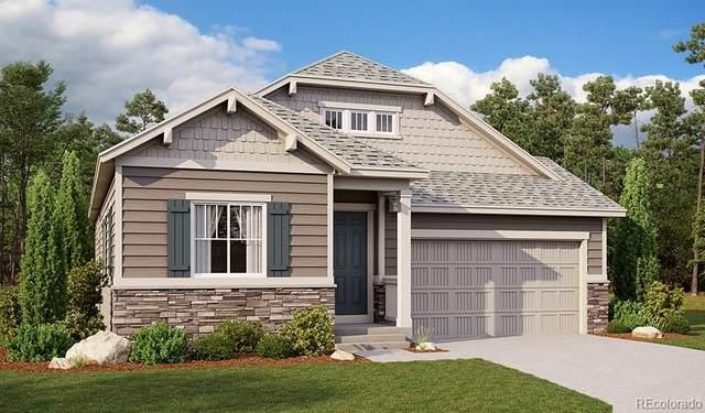 2606 Villageview Lane, Castle Rock, CO 80104 (#2633032) :: The Artisan Group at Keller Williams Premier Realty