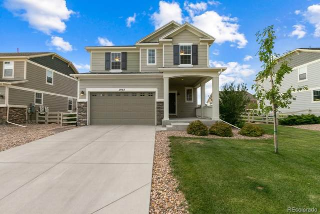 2963 Haflinger Drive, Fort Collins, CO 80525 (#2634602) :: My Home Team