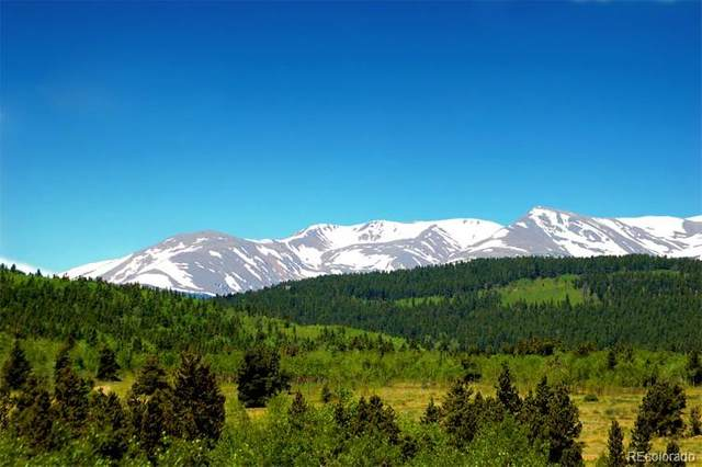 Parcel 23A Bald Mountain Road, Central City, CO 80427 (#2635391) :: The DeGrood Team