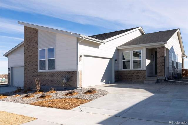 2020 Sagerock Drive, Castle Pines, CO 80108 (MLS #2636976) :: 8z Real Estate