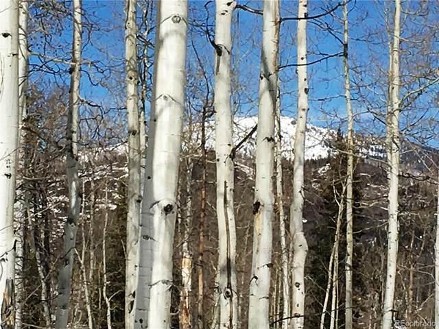 26650 Beaver Canyon Drive, Clark, CO 80428 (MLS #2642145) :: The Sam Biller Home Team