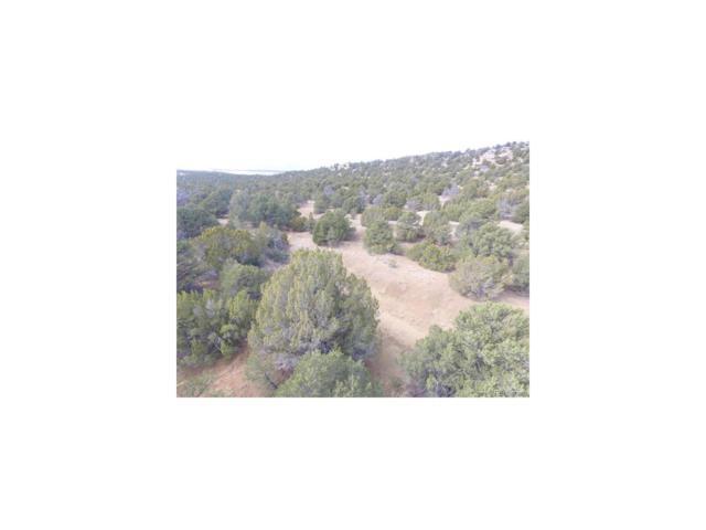 Lot 111 Phase 5 River Ridge Ranch, Walsenburg, CO 81089 (MLS #2647097) :: 8z Real Estate
