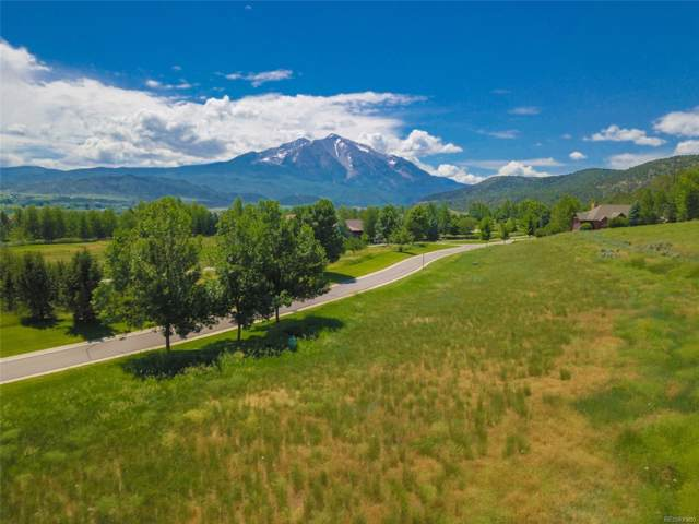 719 Perry Ridge Road, Carbondale, CO 81623 (#2647924) :: The DeGrood Team