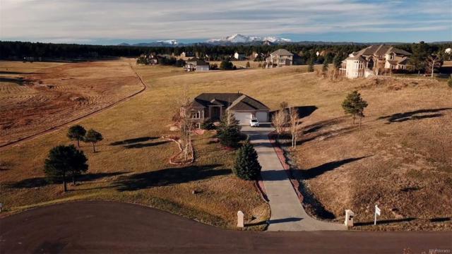 915 E Kings Deer Point, Monument, CO 80132 (#2648350) :: House Hunters Colorado