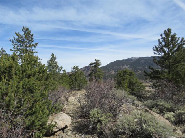 Twin Kopie Road, Buena Vista, CO 81211 (MLS #2649117) :: 8z Real Estate