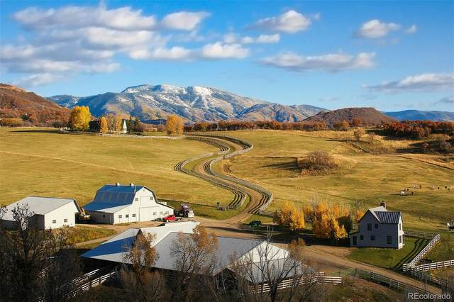 42070 County Road 129, Steamboat Springs, CO 80487 (#2650796) :: Hudson Stonegate Team