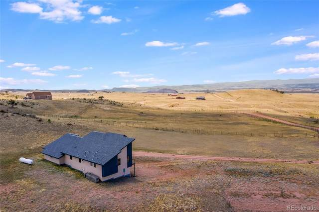 2176 Great Twins Road, Livermore, CO 80536 (MLS #2652872) :: 8z Real Estate