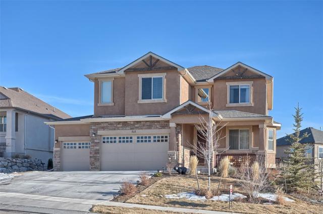717 Black Arrow Drive, Colorado Springs, CO 80921 (#2656090) :: Wisdom Real Estate