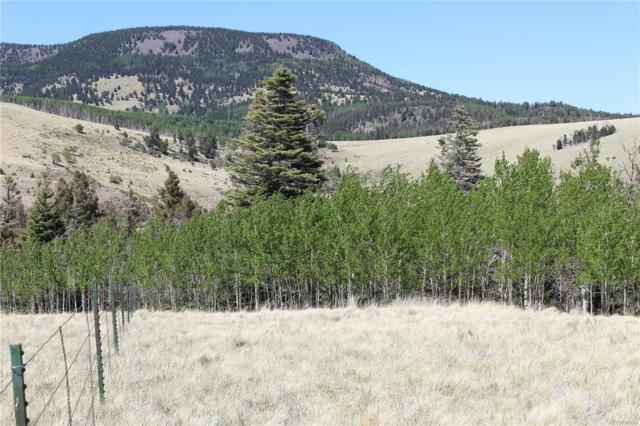 00 Snowdrift Lane, Cotopaxi, CO 81223 (MLS #2657390) :: 8z Real Estate