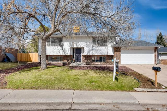 7281 S Webster Street, Littleton, CO 80128 (#2663284) :: The DeGrood Team
