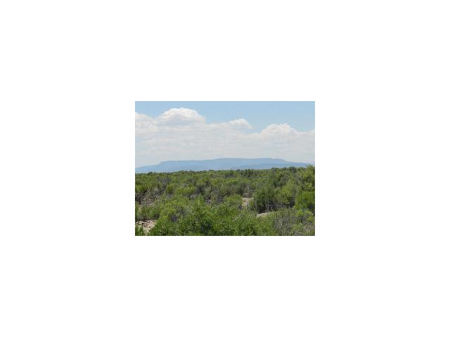 Tbd County Rd 8S, Alamosa, CO 81101 (MLS #2665140) :: 8z Real Estate