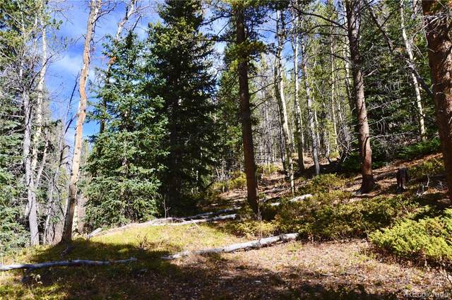 0 Tiger's Nest Trail, Idaho Springs, CO 80452 (#2666421) :: Re/Max Structure