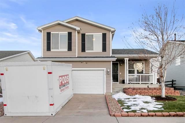 7816 Mule Deer Place, Littleton, CO 80125 (#2666558) :: Wisdom Real Estate