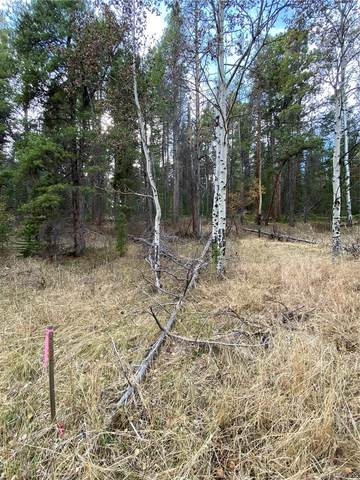 Lot 7X TBD Wallace Avenue, Conifer, CO 80433 (#2671837) :: The DeGrood Team