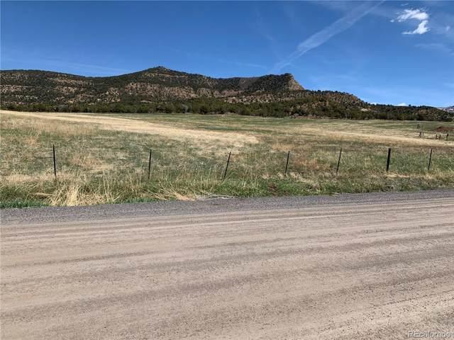 14401 Apache Lane, Collbran, CO 81624 (#2672099) :: The DeGrood Team