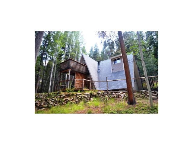166 Apache Road, Evergreen, CO 80439 (MLS #2673106) :: 8z Real Estate