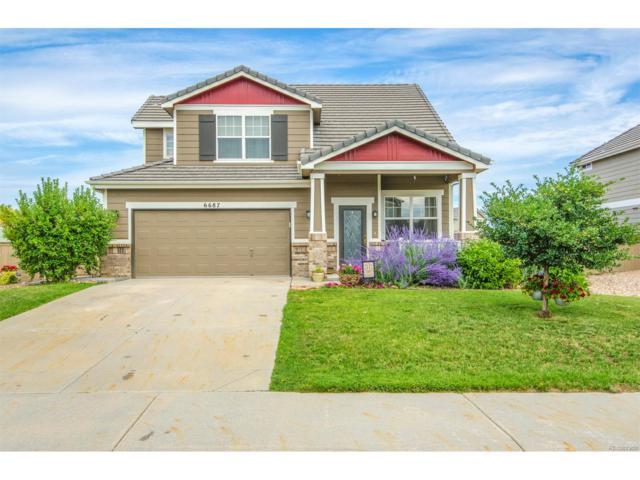 6687 Turnstone Avenue, Castle Rock, CO 80104 (MLS #2673616) :: 8z Real Estate