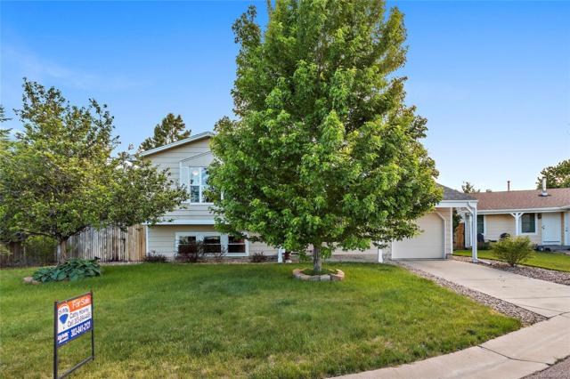 8621 Barberry Place, Parker, CO 80134 (#2675933) :: Sellstate Realty Pros