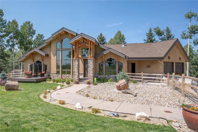 1681 County 5 Road, Divide, CO 80814 (#2676023) :: Wisdom Real Estate