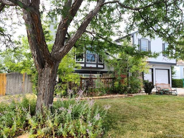 10570 W 105th Avenue, Westminster, CO 80021 (#2677305) :: The DeGrood Team