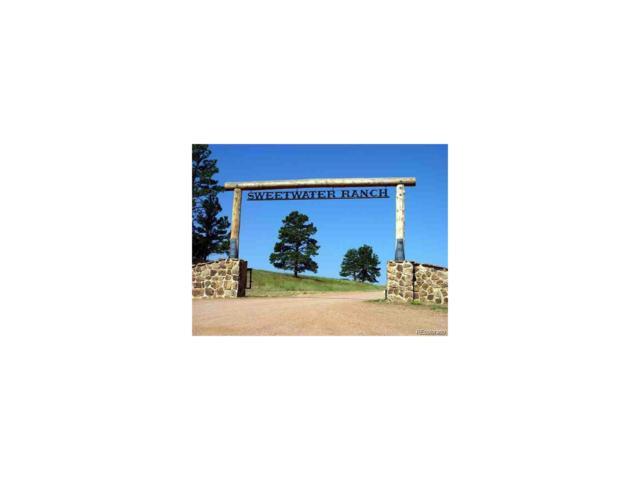 Parcel 11 Big Sky Trail, Elbert, CO 80106 (MLS #2681085) :: 8z Real Estate