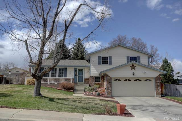 6295 S Chase Street, Littleton, CO 80123 (MLS #2681551) :: 8z Real Estate