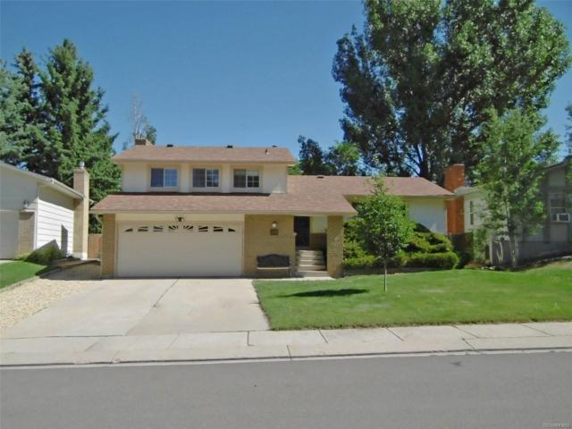 4766 Bunchberry Lane, Colorado Springs, CO 80917 (#2684545) :: Structure CO Group