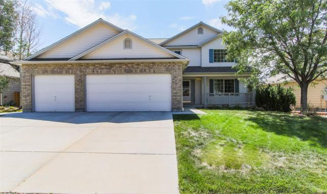 850 Quarterhorse Trail, Castle Rock, CO 80104 (#2686309) :: Bring Home Denver