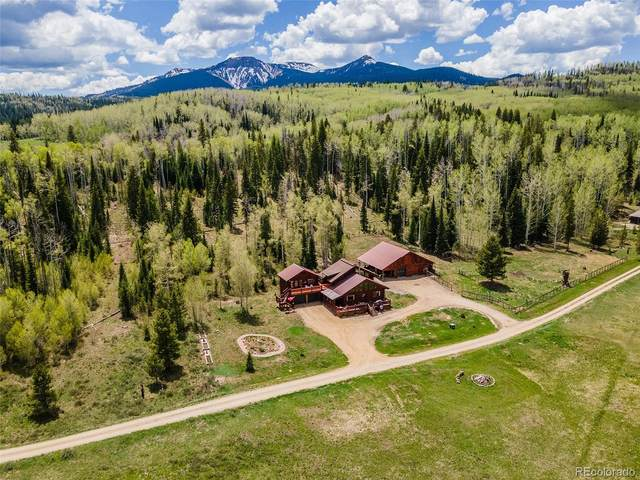 60455 Floyd Creek Road, Clark, CO 80428 (#2691093) :: The Colorado Foothills Team | Berkshire Hathaway Elevated Living Real Estate
