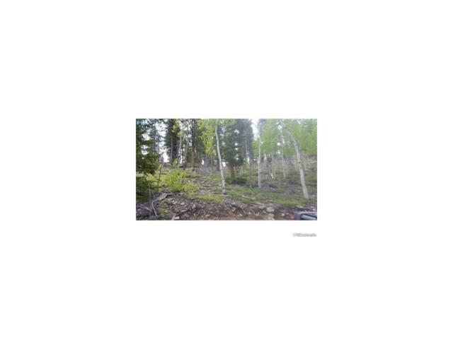 7,8,9 Hidden Wilderness Rd, Idaho Springs, CO 80401 (MLS #2693673) :: 8z Real Estate