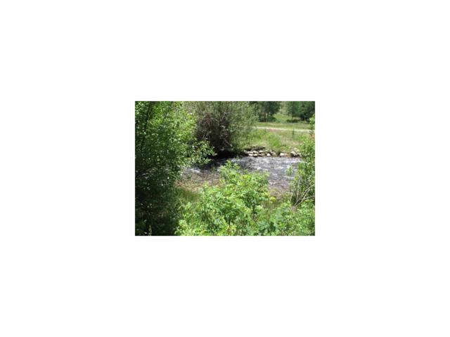 17198 Willow Tree Lane, Salida, CO 81201 (MLS #2693845) :: 8z Real Estate